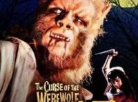 この画像は、サイトの記事「爆笑無料! ノンスタイル 狼男! ギャグ炸裂 お笑い動画 YouTubeまとめ!」のイメージ写真画像として利用しています。